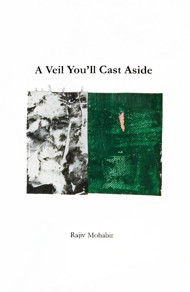A Veil You'll Cast Aside cover